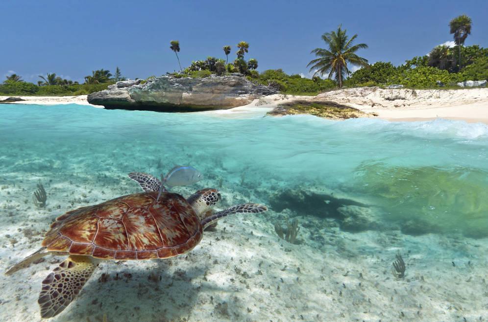 Cuándo viajar a la Riviera Maya